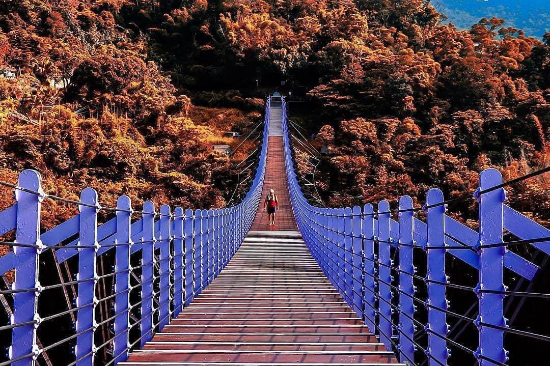 白石湖吊橋&碧山巖夜景-內湖親子景點